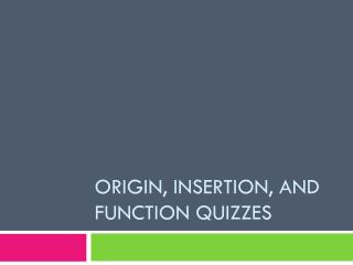Origin, Insertion, and Function Quizzes