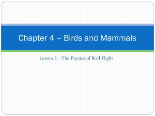 Chapter 4  –  Birds and Mammals