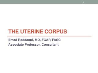The Uterine Corpus