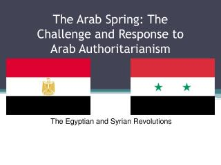 The  Arab Spring: The Challenge and Response to Arab Authoritarianism