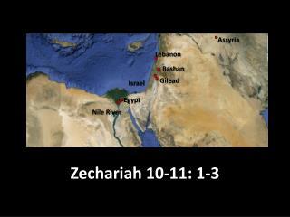 Zechariah 10-11: 1-3