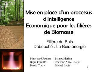 Mise en place d'un processus d'Intelligence Economiquepour les filières de Biomasse