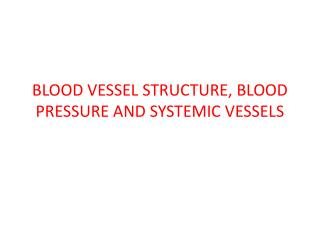 BLOOD VESSEL STRUCTURE, BLOOD PRESSURE AND SYSTEMIC VESSELS