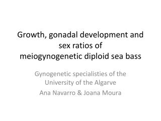 Growth ,  gonadal development and sex  ratios  of meiogynogenetic diploid sea bass
