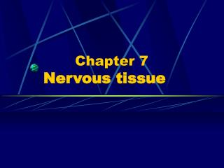 Chapter 7   Nervous tissue