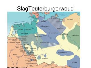 SlagTeuterburgerwoud