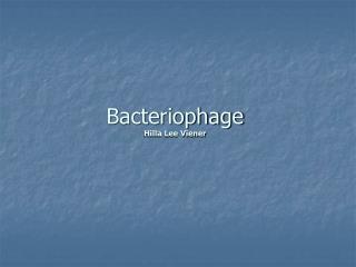 Bacteriophage Hilla Lee Viener