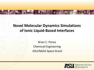 Novel Molecular Dynamics Simulations  of Ionic Liquid-Based Interfaces