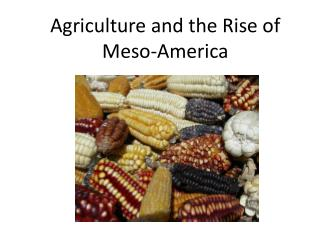 Agriculture and the Rise of  Meso -America
