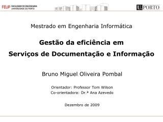 Mestrado em Engenharia Informática Gestão da eficiência em Serviços de Documentação e Informação