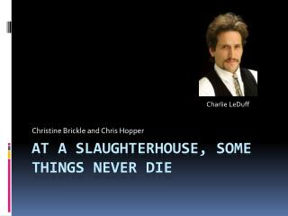 At A Slaughterhouse, Some Things Never Die