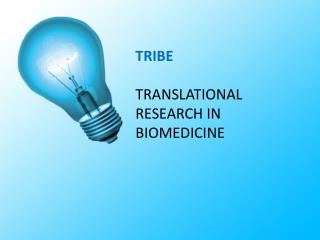 TRIBE TRANSLATIONAL  RESEARCH IN  BIOMEDICINE