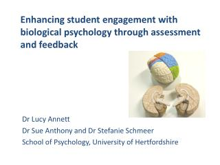 Enhancing student engagement with biological psychology through assessment and feedback