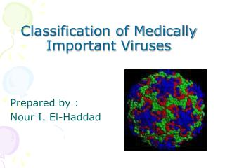 Classification of Medically Important Viruses