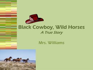 Black Cowboy, Wild Horses A True Story