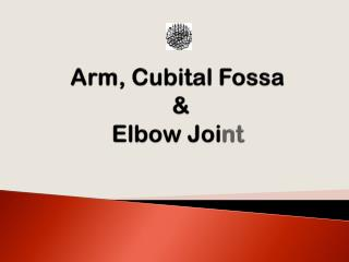 Arm,  Cubital Fossa  &  Elbow Joi nt