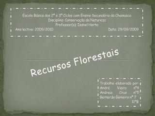 Recursos Florestais