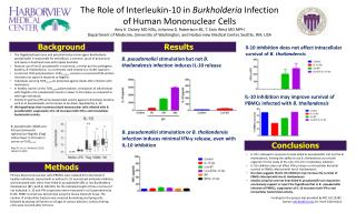 The Role of Interleukin-10  in  Burkholderia  Infection  of  Human Mononuclear  Cells