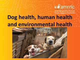 Dog health, human health and environmental health