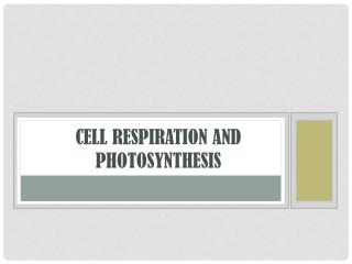 Cell Respiration and Photosynthesis