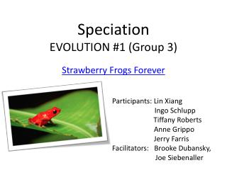 Speciation EVOLUTION #1 (Group 3)