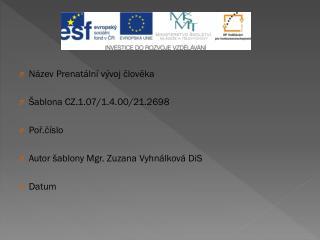 Název  Prenatální vývoj  člověka Šablona CZ.1.07/1.4.00/21.2698 Poř.číslo