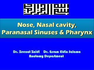 Nose, Nasal cavity,  Paranasal  Sinuses & Pharynx