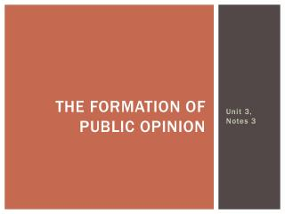 The Formation of Public Opinion