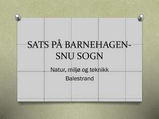 SATS PÅ BARNEHAGEN-SNU SOGN