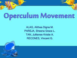ALAG,  Alithea Digna  M. PAREJA, Sheena Grace L.  TAN, Jullienee Kristie A. RECONES, Vincent G.
