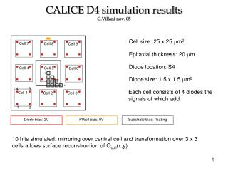 CALICE D4 simulation results G.Villani nov. 05