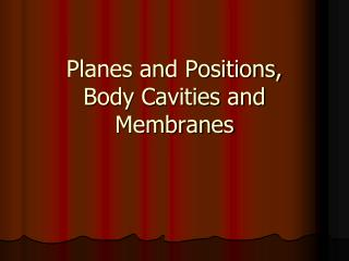 Planes and Positions,  Body  Cavities and Membranes
