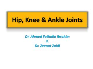 Hip, Knee & Ankle Joints