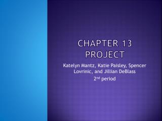 Chapter 13 project