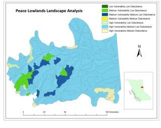 Peace Lowlands Landscape Analysis