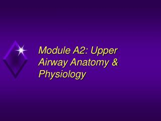 Module A2: Upper Airway Anatomy  Physiology
