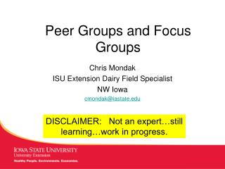 Peer Groups and Focus Groups