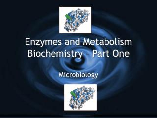 Enzymes and Metabolism Biochemistry   Part One