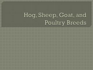 Hog, Sheep, Goat, and Poultry Breeds