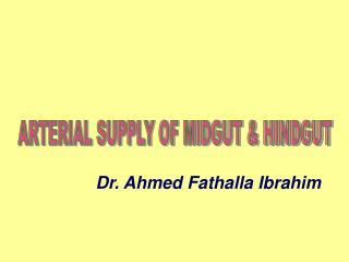 ARTERIAL SUPPLY OF MIDGUT & HINDGUT