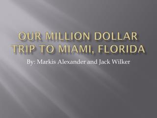 Our Million Dollar Trip To Miami, Florida