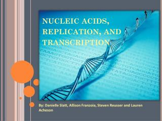 nucleic acids, replication,  and transcription