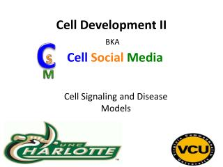 Cell Development II