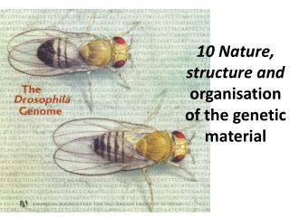 10 Nature, structure and  organisation of the genetic material