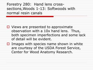Forestry 280:  Hand lens cross-sections,Woods 1-13: Softwoods with normal resin canals