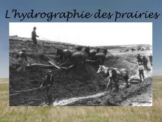 L'hydrographie  des prairies