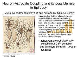 Neuron-Astrocyte Coupling and its possible role in Epilepsy
