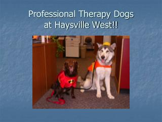 Professional Therapy Dogs  at Haysville West!!