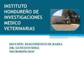INSTITUTO HONDUREÑO DE INVESTIGACIONES MEDICO VETERINARIAS