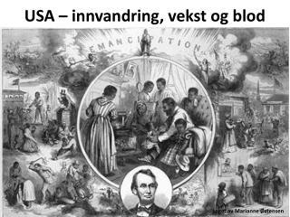 USA � innvandring, vekst og blod